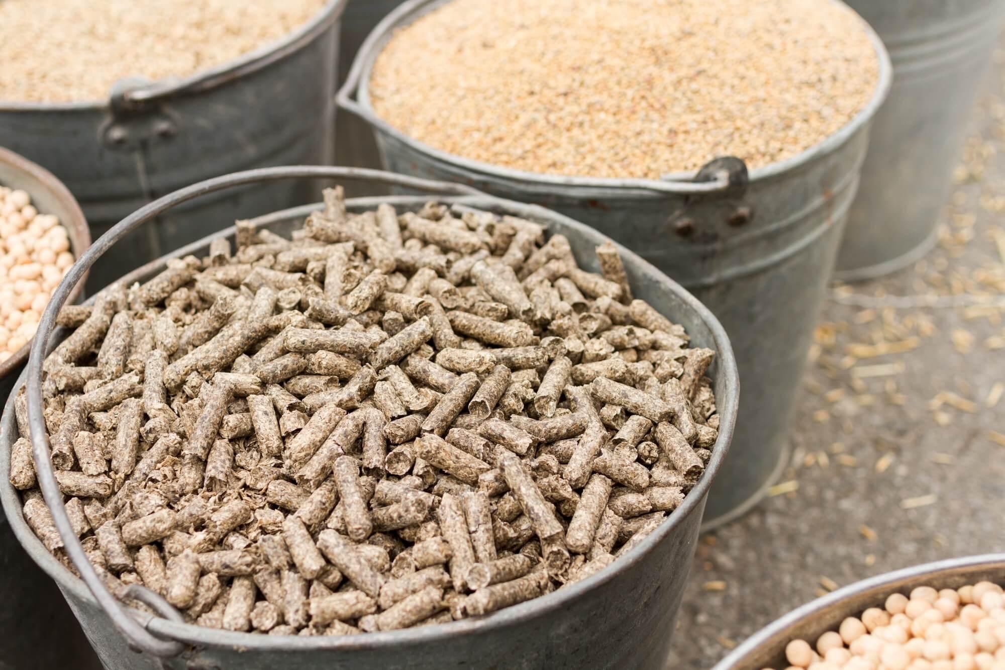Corngerm meal pellets (Maïskiemschroot / Cornex)